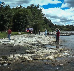 """[VIDEO] """"Pool Party"""": Así fue el """"picnic"""" en el lago Ranco que se realizó tras la polémica"""