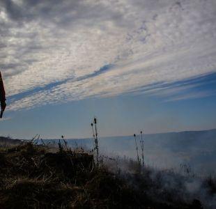 Incendios forestales en el sur del país