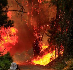 Onemi declara Alerta Roja para Chillán por incendios forestales
