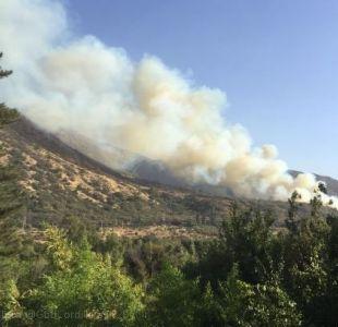 Onemi declara Alerta Roja para Pirque por incendio forestal