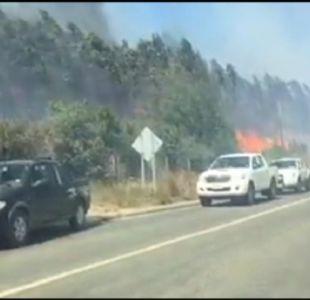 [VIDEO] Evacuación por incendios en Ñuble