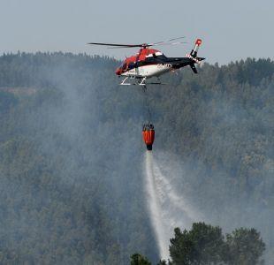 PDI investiga procedimiento forestal que habría provocado incendio en Nacimiento