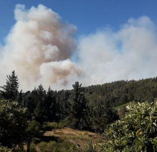 Onemi reporta 32 incendios forestales en el centro-sur del país