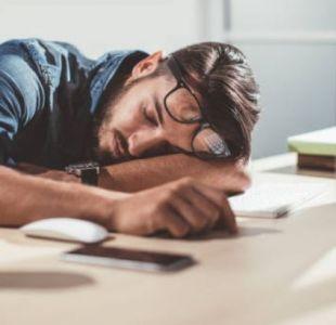 51d04e0749 Experta en sueño plantea que jefes deberían dejar que personas duerman una  hora en el trabajo