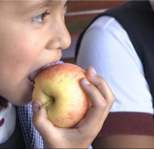 Junaeb informa sobre entrega de colaciones en colegios con clases suspendidas