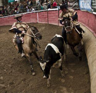 Senador Girardi junto a animalistas buscan prohibir el rodeo