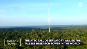 [VIDEO] La torre más alta que construyen en el Amazonas para combatir el cambio climático