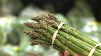 [T13] Mango, paltas y espárragos destacan en los productos que Chile importa de Perú
