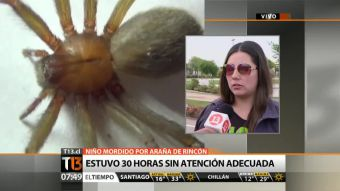 Madre de niño mordido por araña de rincón denuncia mal diagnóstico