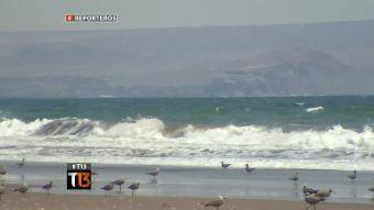 Reporteros: ¿Playas para Bolivia?