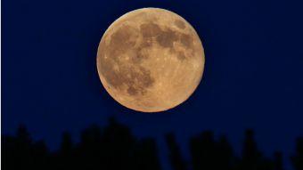 La Súper Luna más grande del año podrá verse en Chile durante esta madrugada