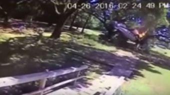 [VIDEO] Piloto resulta ileso luego de que la avioneta que tripulaba se estrellara