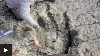 Así es la inmensa huella de dinosaurio hallada en Bolivia