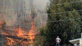 Incendios forestales llevan 33 mil hectáreas consumidas en el país