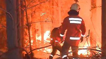 [VIDEO] Incendio destruye viviendas y cosechas en Florida, Provincia de Concepción
