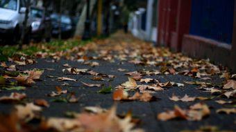Adiós verano: Este martes comienza el otoño en el hemisferio sur