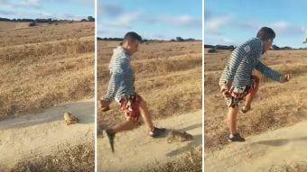 Hombre patea conejo es buscado por la Policía de España
