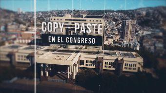 [VIDEO] Reportajes T13: El copy paste de los diputados