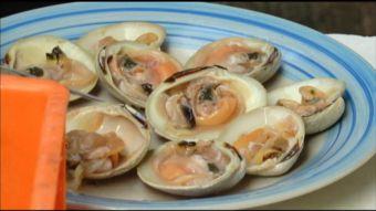[Video] Alerta por almejas contaminadas con Marea Roja