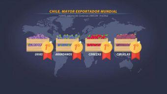 [VIDEO] Chile es top one en exportación de frutas en el mundo