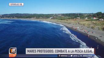 [VIDEO] Pesca ilegal: La conciencia cultural de preservar los mares