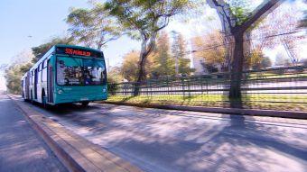 [VIDEO] Avenida Grecia se convertirá en el primer electrocorredor de Santiago
