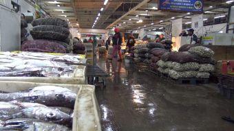 [VIDEO] #HistoriasEn8Minutos: Historias del terminal pesquero
