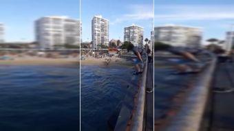 [VIDEO] Peligroso piquero desde Muelle Vergara en Viña del Mar