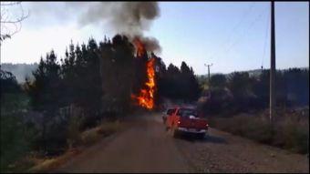 [VIDEO] Polémicos dichos de Ubilla por incendios