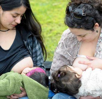 Amamantar sin condiciones y donar leche: Así es el proyecto de protección a la lactancia materna