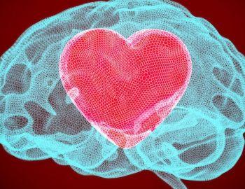 Qué es lakisspeptina, la hormona afrodisíaca que despierta el deseo sexual