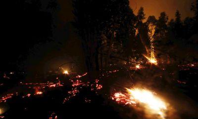Incendios forestales: Conaf explica que temporada crítica se adelantó dos meses