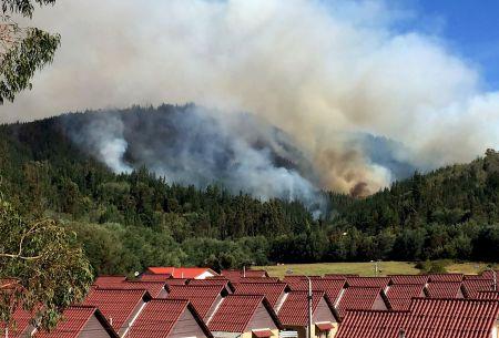 Anuncian querella tras incendio donde murieron tres brigadistas en Vichuquén